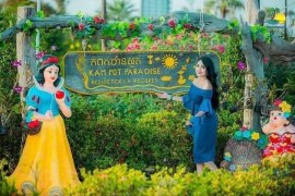 Kampot Thansur Resort is increasing its attractiveness with the first large sunflower garden